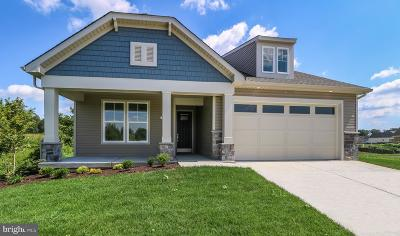 Dover Single Family Home For Sale: 110 Ponds Edge Way
