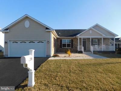 Dover Single Family Home For Sale: 28 Steeplechase Drive
