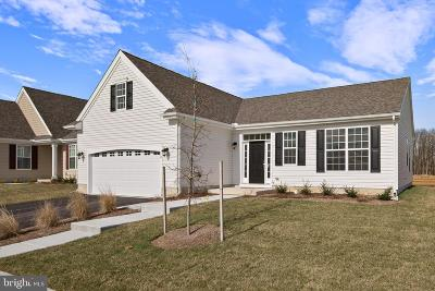 Smyrna Single Family Home For Sale: 13 Cyclops Trail