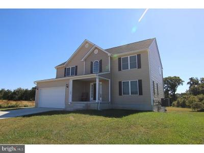 Kent County Single Family Home For Sale: 163 S Marshview Terrace