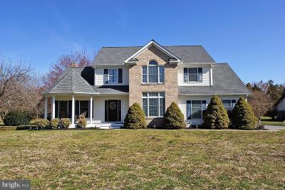 Smyrna Single Family Home Under Contract: 143 Segraves Circle