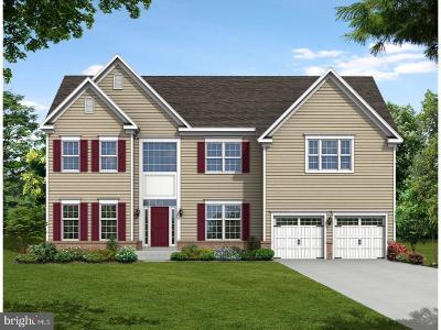 Smyrna Single Family Home For Sale: 18 Magnolia Avenue #WATERF