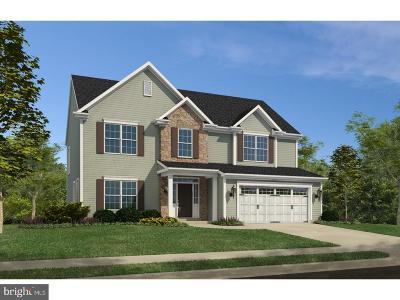 Smyrna Single Family Home For Sale: 18 Magnolia Avenue #ADDISO