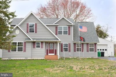 Dover Single Family Home For Sale: 247 Bush Dr