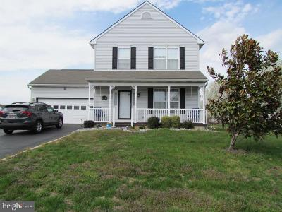 Dover Single Family Home For Sale: 296 Burnham Lane