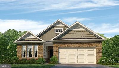 Smyrna Single Family Home For Sale: 25 Privet Drive