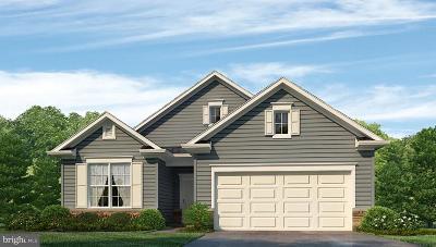 Smyrna Single Family Home For Sale: 120 Tulip Drive