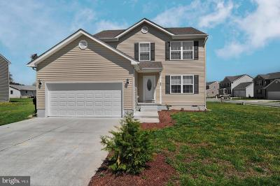 Kent County Single Family Home For Sale: 55 Sweeping Mist Circle