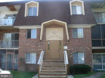 Dover Rental For Rent: 21 Par Haven Drive #D34