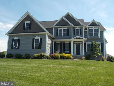 Kent County Single Family Home For Sale: 232 Chanticleer Circle