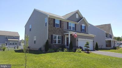 Dover Single Family Home For Sale: 730 Harvest Grove Trail