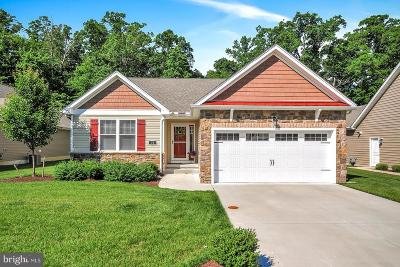 Dover Single Family Home For Sale: 75 Coalstone Ct.