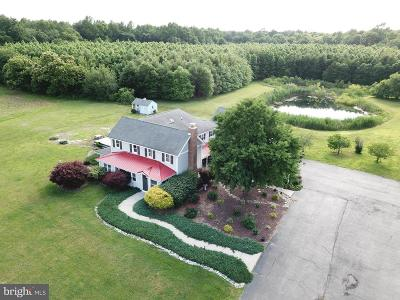 Harrington Farm For Sale: 953 White Marsh Branch Lane