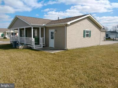 Camden Single Family Home For Sale: 12 Martindale Way