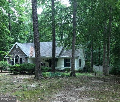 Frederica Single Family Home For Sale: 524 Ruyter Drive