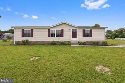 Harrington Single Family Home For Sale: 178 Fernwood Drive