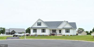 Felton Single Family Home For Sale: 48 Kelly Court