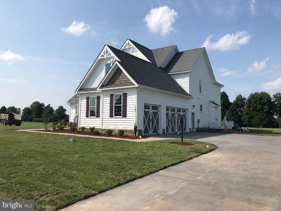 Kent County Single Family Home For Sale: Summit