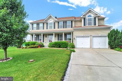 Magnolia Single Family Home For Sale: 73 Mayapple Lane