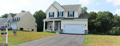 Dover Single Family Home For Sale: 675 Harvest Grove Trail