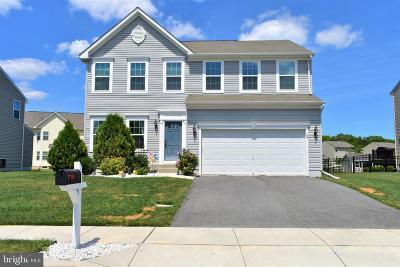 Smyrna Single Family Home For Sale: 58 Bluegrass Boulevard