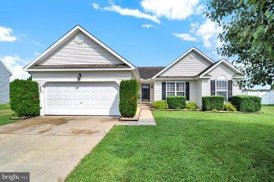 Felton Single Family Home For Sale: 183 S Ember Drive