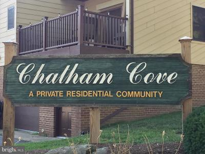 Dover Condo For Sale: 85 Chatham Court