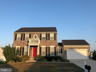 Magnolia Single Family Home For Sale: 87 Deerberry Drive