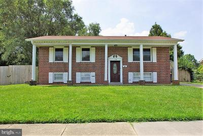 Dover Single Family Home For Sale: 378 Mimosa Avenue
