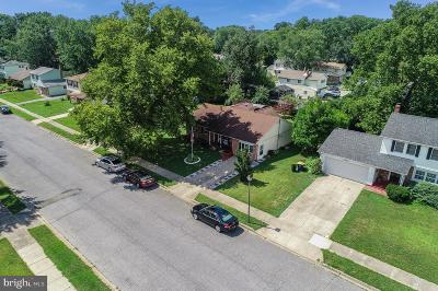 Dover Single Family Home For Sale: 313 Kesselring Avenue