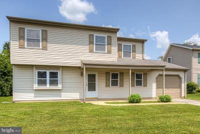 Dover Single Family Home For Sale: 1415 S Hancock Avenue