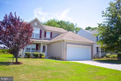 Smyrna Single Family Home For Sale: 574 Groundhog Lane