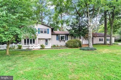 Harrington Single Family Home For Sale: 670 Jackson Ditch Road