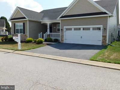 Dover Single Family Home For Sale: 121 Winding Carriage Ln