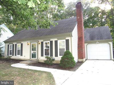 Dover Single Family Home For Sale: 704 Independence Boulevard