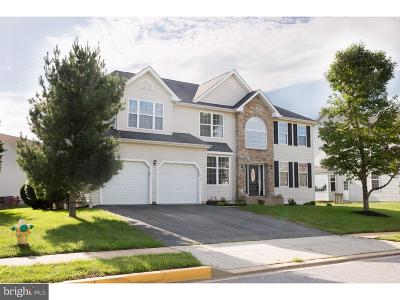 Middletown Single Family Home For Sale: 210 Porky Oliver Drive