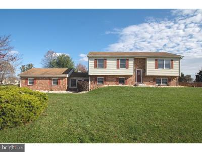 Middletown Single Family Home For Sale: 115 Airmont Drive
