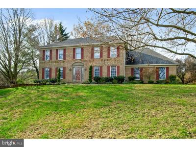 Newark Single Family Home For Sale: 1 Findail Drive