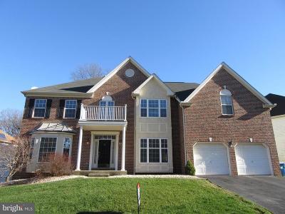 Newark Single Family Home For Sale: 17 Blackbird Court