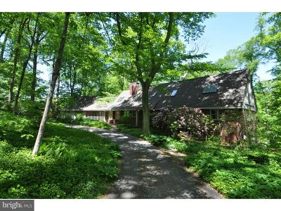 Newark, Kennett Square, Middletown, Wilmington, Greenville, Centerville, Chadds Ford, Landenberg Single Family Home For Sale: 17 Walnut Ridge Road