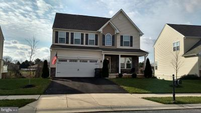 Middletown Single Family Home For Sale: 206 Parker Drive