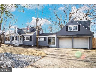 Newark Single Family Home For Sale: 49 N Old Baltimore Pike