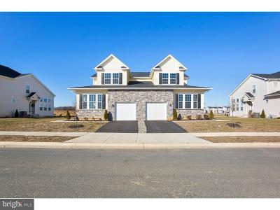 Middletown Single Family Home For Sale: 245 Rossnakill Road #272