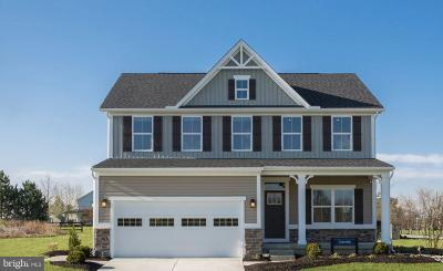Middletown Single Family Home For Sale: 2700 Tywyn Drive