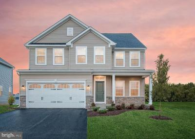 Middletown Single Family Home For Sale: 2800 Tywyn Drive
