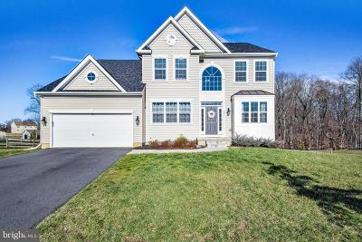 Middletown Single Family Home For Sale: 187 Shannon Boulevard