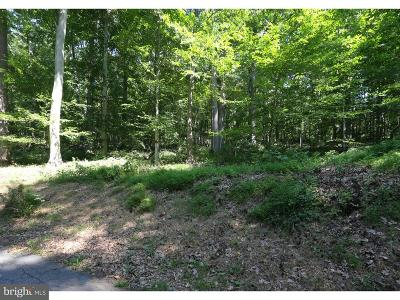 Wilmington Residential Lots & Land For Sale: 9 Laurel Ridge Road