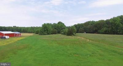 Townsend Residential Lots & Land For Sale: 365 Vandyke Maryland Line Road