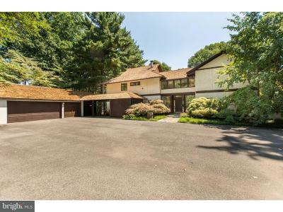 Hockessin Single Family Home For Sale: 415 Dogwood Drive