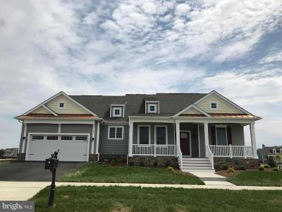New Castle County Single Family Home For Sale: 336 Ellenwood Drive